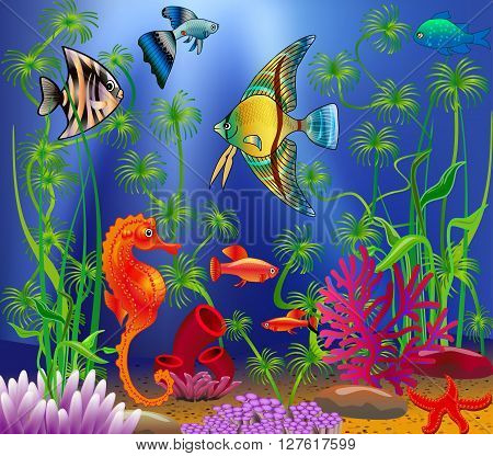 Underwater landscape with various water plants and swimming trop