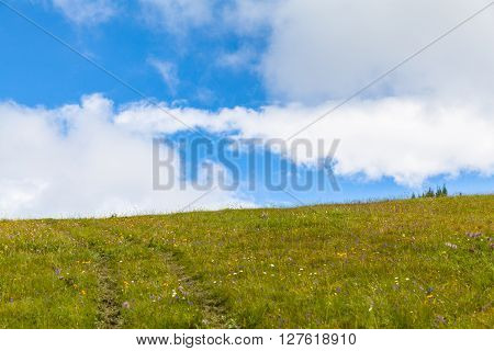 On The Hiking Path On Bernese Oberland
