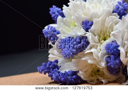 Bouquet Of White Chrysanthemum And Blue Grape Hyacinth On Dark Background. Studio Lights And Shadows
