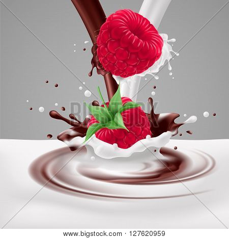 Appetizing raspberries in milk and chocolate splashes