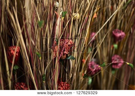 Natural Fiber Dried Grasses And Dried Flowers In A Vase