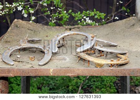 Five Old Rusty Horseshoes As A Background At Rural Horse Farm As Fortune Symbol
