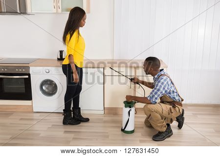 Male Worker Spraying Pesticides On Wooden Drawer