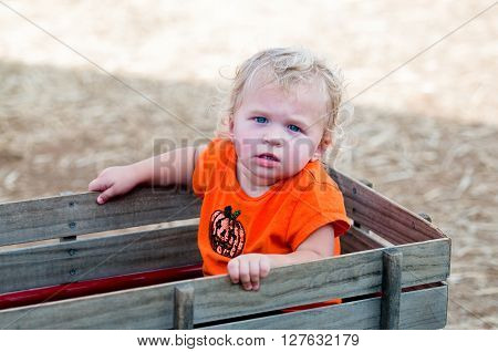 Portrait of an adorable curly haired toddler girl sitting in a wooden wagon.