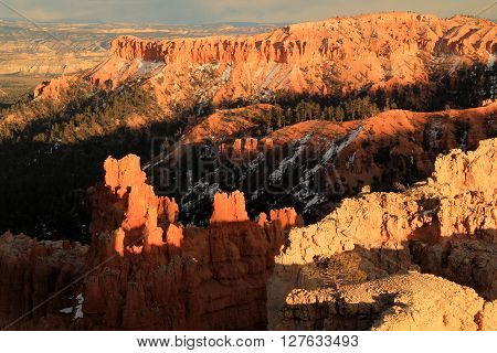 Scenic Landscape in Bryce Canyon National Park, Utah
