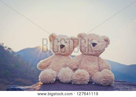teddy bear adventure to the mountains, selective focus