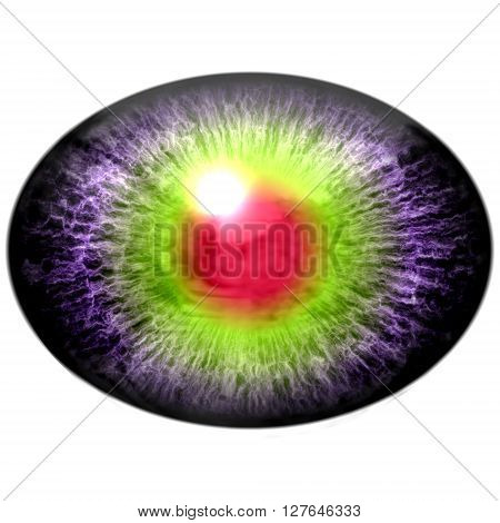 Isolated Eye. Raptor Purple Eye With Large Pupil And Bright Red Retina In Background. Dark Iris.