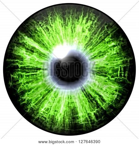 Isolated Green Eye. Illustration Of Green Blue Stripped Eye Iris, Light Reflection