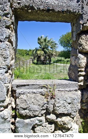 Palm tree through ancient stone wall window on sunny day