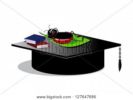 icon vacation. funny an icon, the lying beetle on a cap of the bachelor and the book