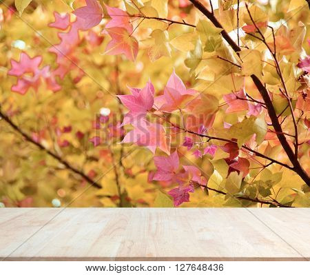 Wood empty material background for product display.