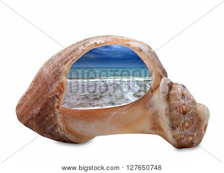 Sea beach in sun evening through broken rapana shell. Isolated on white background.