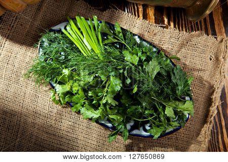 Spring Garden Fresh Green Herbs DIsh