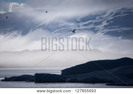 Foggy glacier lake with iceberg in front of snow-covered mountain