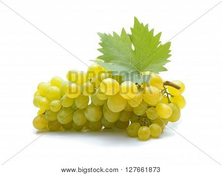 Fresh green grapes with leaves on white