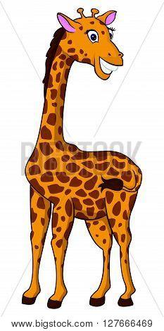 Girafe illustration .eps10 editable vector illustration design