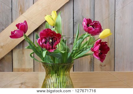 Spring bouquet Burgundy and yellow tulips on the background of boards.