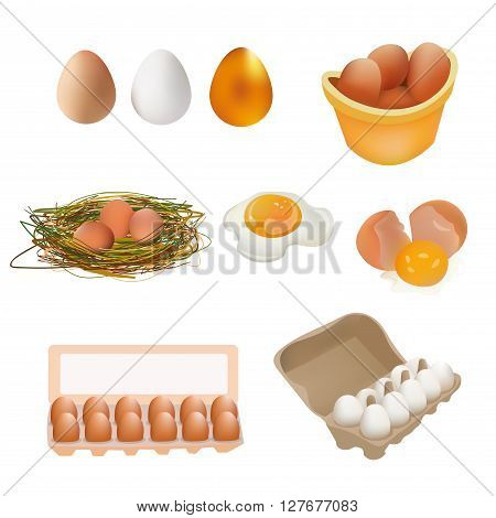Egg Icon Set. White Brown Gold Egg Broken Egg and Fried Egg Eggs in Box Nest. Vector Illustration Icon. Isolated On White Background