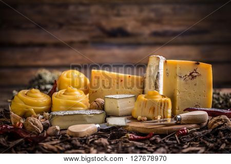 Various types of artisan cheese, still life