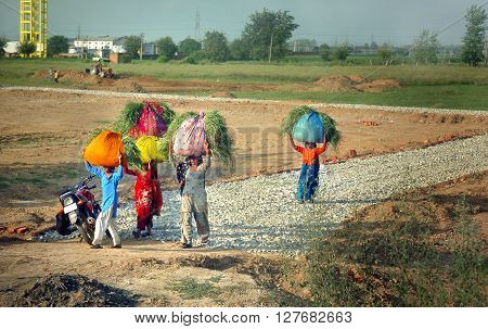 KARNAL, HARYANA, INDIA - AUGUST 3: Group of indian women carrying sacks of grass on their heads August 3, 2011 near Karnal, Haryana, India. Much of India's economy still relies on traditional labour.