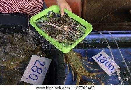 Asia Thailand Phuket Markt