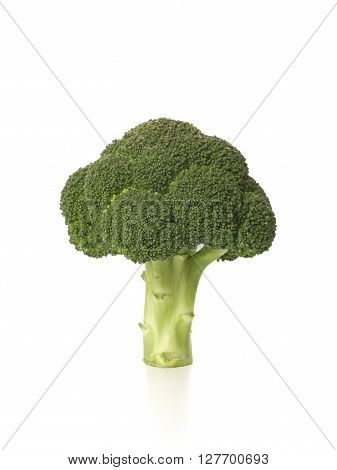 Raw Brocoli isolated on a white background