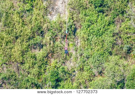 BLOUKRANS BRIDGE SOUTH AFRICA - MARCH 2 2016: An unidentified female bungee jumper in the worlds highest commercial bungee jump at the Bloukrans Bridge at 216 meter the highest bridge in Africa