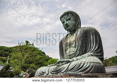 The Great Buddha of Kamakura (Kamakura Daibutsu) a bronze statue of Amida Buddha in Kotokuin Temple Kamakura Kanagawa Japan