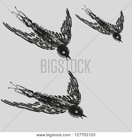 Illustration of three Common Swift in flight