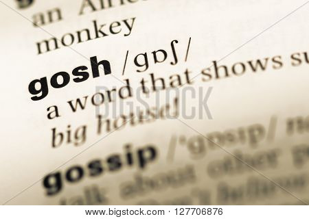 Close Up Of Old English Dictionary Page With Word Gosh.