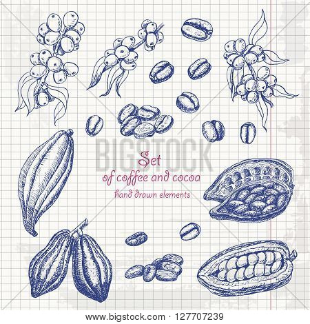 Set of coffee and cocoa in sketch style on paper. Vector illustration for your design