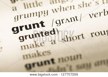 Close Up Of Old English Dictionary Page With Word Grunt.