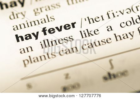 Close Up Of Old English Dictionary Page With Word Hay Fever.