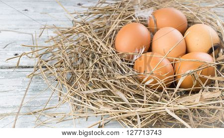 Brown eggs in hay eggs in nest hen eggs. Sackcloth and wooden background