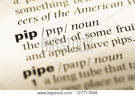 Close Up Of Old English Dictionary Page With Word Pip.