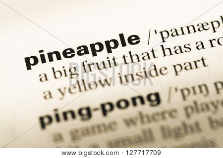 Close Up Of Old English Dictionary Page With Word Pineapple.