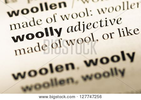 Close Up Of Old English Dictionary Page With Word Woolly.