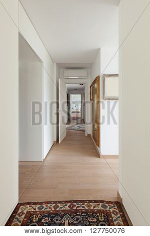 Interior of new apartment, corridor with parquet floor and carpet