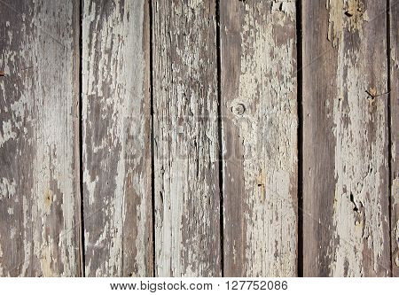 Old wooden plank with cracked white paint background
