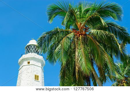 White lighthouse Dondra Head and tropical palms Sri Lanka near Matara.