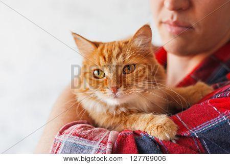 Man in red plaid tartan shirt holding ginger cat.