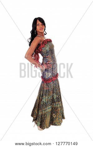 A gorgeous African American woman standing in an African long dress and black hair in profile isolated for white background.