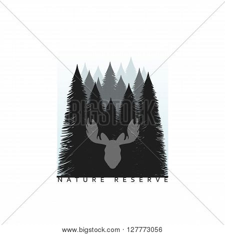 Tree silhouette isolated on white background  image of nature. Tree Silhouette. Camping Background. Abstract nature tree background,