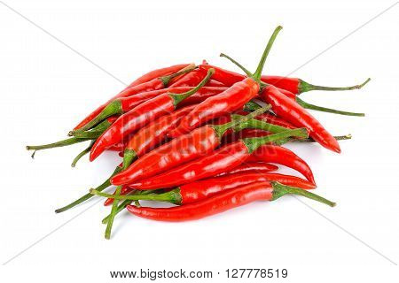Red Chili Pepper Isolated On A White