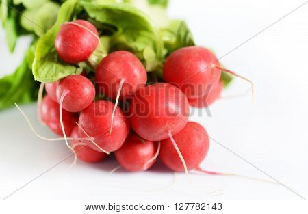 Fresh red radish isolated on white background ** Note: Shallow depth of field