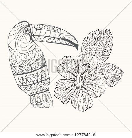 Vector background hibiscus flower and ltoucan hand drawn in black and white outline for coloring page coloring book for adult illustration