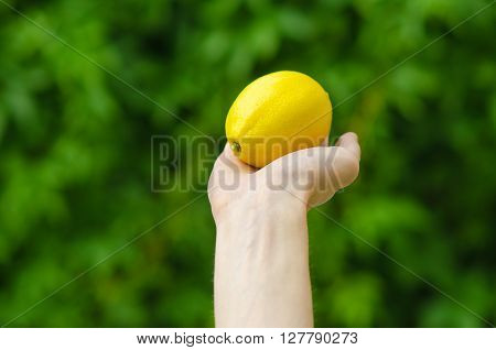 Vegetarians And Fresh Fruit And Vegetables On The Nature Of The Theme: Human Hand Holding A Lemon On