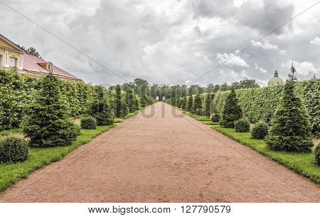 Beautiful orange park alley with decorative trees on the sides