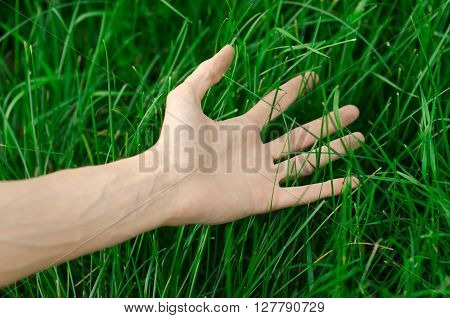 Spring and relaxation theme: the human hand touches a young fresh green grass in the garden studio