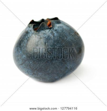 Single berry Ripe bilberry or blueberry over isolated white background